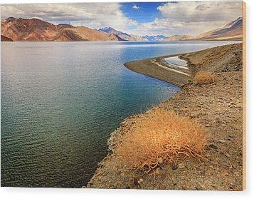 Wood Print featuring the photograph Pangong Tso Lake by Alexey Stiop