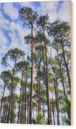 Wood Print featuring the photograph Panhandle Pines by Mel Steinhauer