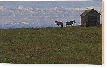 Panorama Of Alberta Wood Print by Al Bourassa