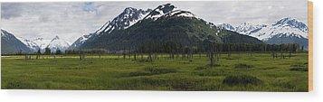 Panorama Of Green Meadow Wood Print
