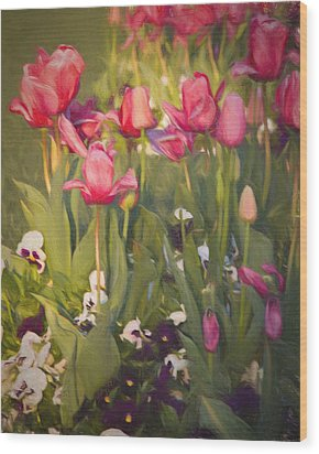 Wood Print featuring the photograph Pansies And Tulips by Lana Trussell