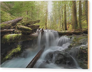 Panther Creek In Gifford Pinchot National Forest Wood Print by David Gn