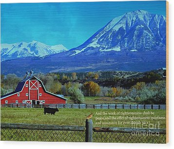 Paonia Mountain And Barn Wood Print by Annie Gibbons