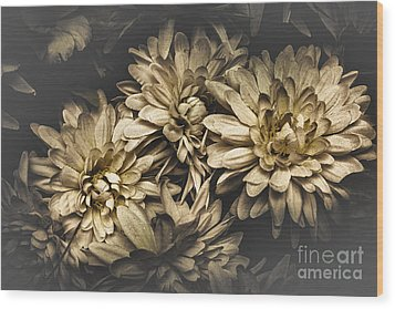 Wood Print featuring the photograph Paper Flowers by Jorgo Photography - Wall Art Gallery