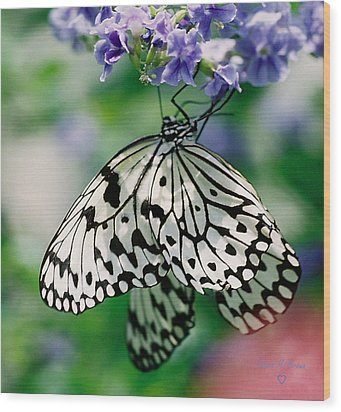 Wood Print featuring the photograph Paper Rice Butterfly by Donna Brown