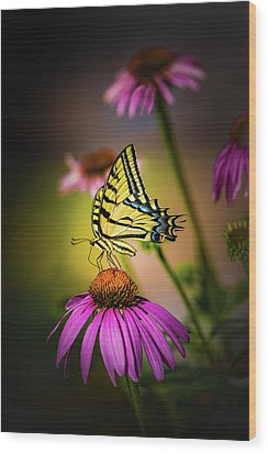 Papilio Wood Print by Jeffrey Jensen