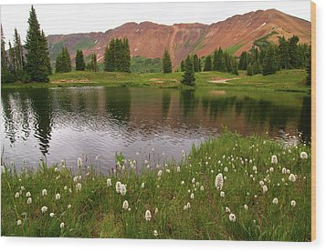 Wood Print featuring the photograph Paradise Basin by Steve Stuller