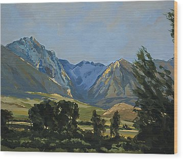 Paradise Valley Mountains Wood Print