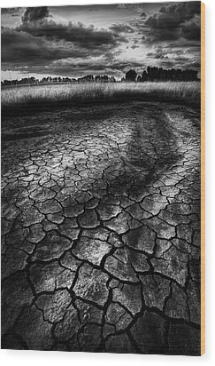 Wood Print featuring the photograph Parched Prairie by Dan Jurak