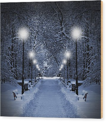 Park At Christmas Wood Print by Jaroslaw Grudzinski