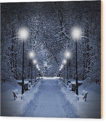 Park At Christmas Wood Print