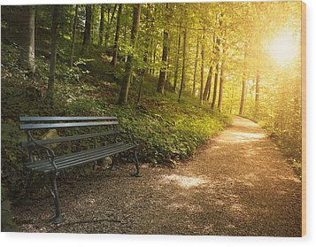 Park Bench In Fall Wood Print by Chevy Fleet