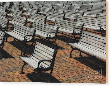 Park Benches Wood Print by Perry Webster