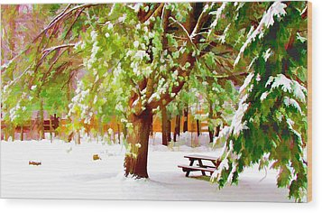 Park In Winter Wood Print by Lanjee Chee