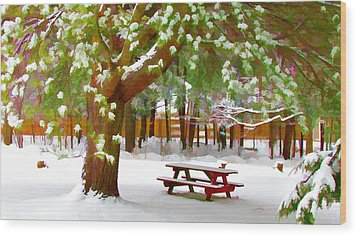 Park In Winter With Snow Wood Print by Lanjee Chee