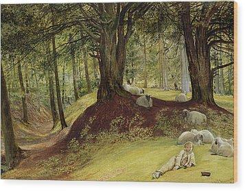 Parkhurst Woods Wood Print by Richard Redgrave