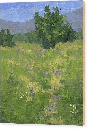 Parkway Spring Oil Wood Print