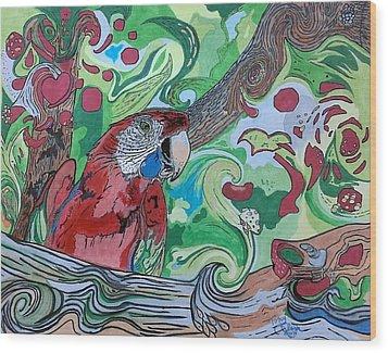 Parrot Kaleidoscope  Wood Print by Tony Clark