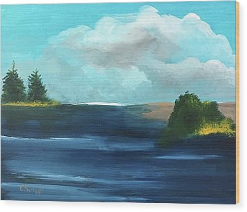 Partly Cloudy Skys Wood Print