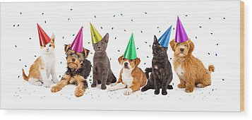 Party Puppies And Kittens With Confetti Wood Print