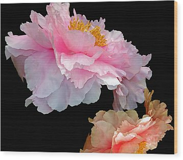 Pas De Deux Glowing Peonies Wood Print