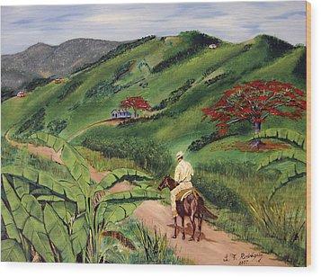 Paseo Por El Campo Wood Print