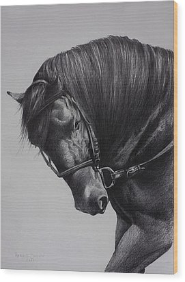 Wood Print featuring the drawing Paso Fino by Harvie Brown