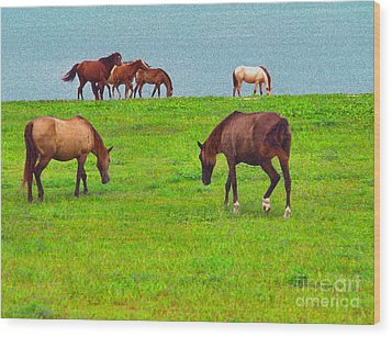 Paso Fino Horses Graze By Seaside Wood Print by Thomas R Fletcher