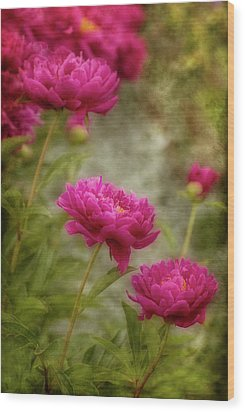 Passion For Pink Wood Print