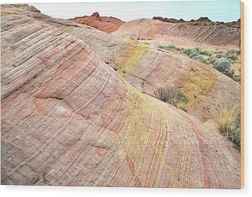 Wood Print featuring the photograph Pastel Dunes In Valley Of Fire by Ray Mathis