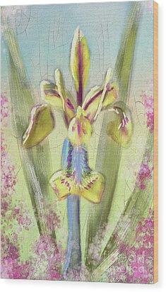 Wood Print featuring the digital art Pastel Iris by Lois Bryan