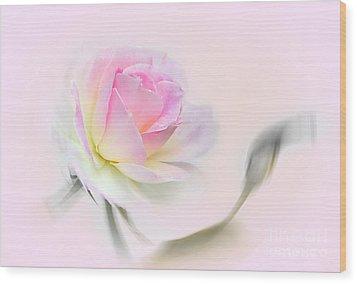 Pastel Passion Wood Print by Kaye Menner