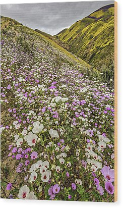 Wood Print featuring the photograph Pastel Super Bloom by Peter Tellone