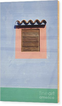 Wood Print featuring the photograph Pastel Wall Gran Roque Venezuela by John  Mitchell