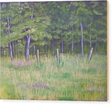 Pasture Paradise Wood Print by Belinda Lawson