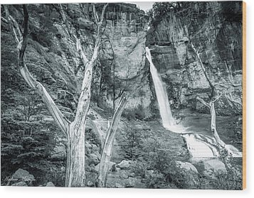Patagonian Waterfall Wood Print by Andrew Matwijec