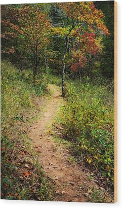 Path In The Prairie Wood Print