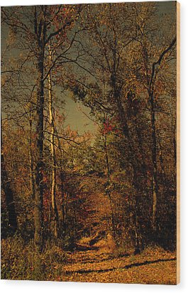 Path Into The Woods Wood Print by Nina Fosdick