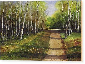 Path Through Silver Birches Wood Print by Paul Dene Marlor