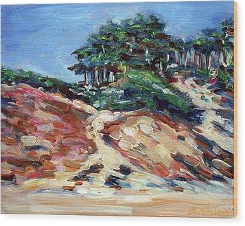Path To Baker Beach Wood Print by Sheila Tajima