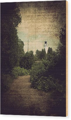 Wood Print featuring the photograph Path To Cana Island Lighthouse by Joel Witmeyer