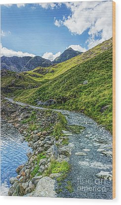 Wood Print featuring the photograph Path To Snowdon by Ian Mitchell