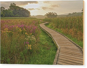 Path To The Light Wood Print