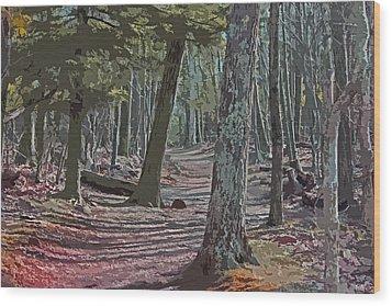 Path We Chose Wood Print