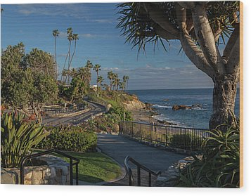 Wood Print featuring the photograph Pathway Along Heisler Park by Cliff Wassmann