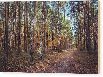 Pathway In The Autumn Forest Wood Print