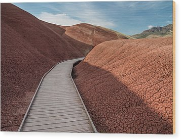 Wood Print featuring the photograph Pathway Through The Reds by Greg Nyquist