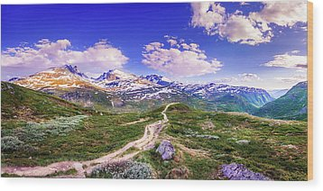 Wood Print featuring the photograph Pathway To A Valley by Dmytro Korol