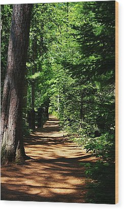 Pathway To Peacefulness Wood Print by Bruce Bley