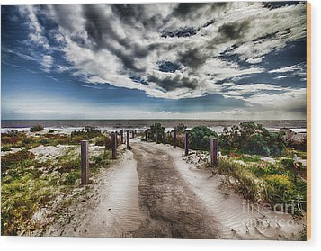 Pathway To The Beach Wood Print by Douglas Barnard